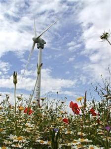 Ecotricity Eco Energy