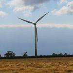 Top 10 Wind Farm Myths – Sorting the Fact from the Fiction