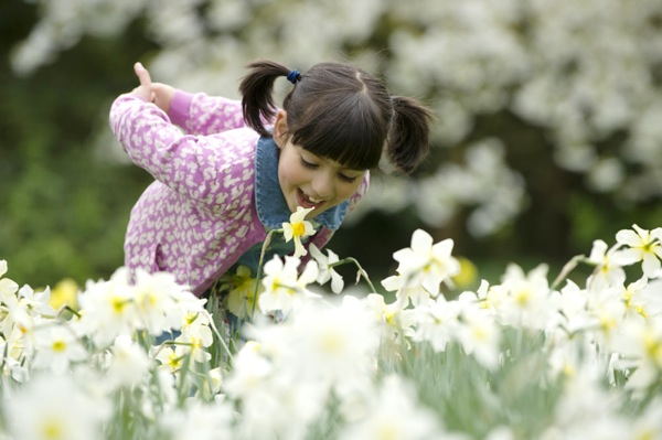 Girl amongst flowers in the garden at Anglesey Abbey, Gardens and Lode Mill, Cambridgeshire.