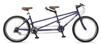Viking Timberwolf Adult Mountain Bike Tandem