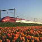 Thalys Trains from Amsterdam from Paris or Brussels