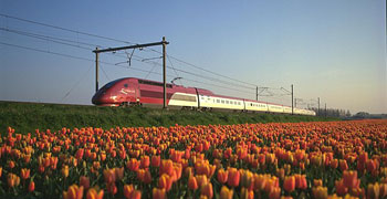 Thalys Trains to Amsterdam