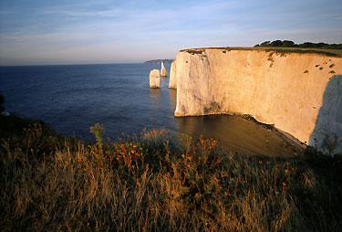 National Trust Walks The Pinnacles Old Harry Rocks Corfe Castle Estate Dorset