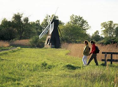 National Trust Walks Wicken Fen Cambridgeshire