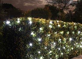 Solar Powered White Led Net Garden Lights