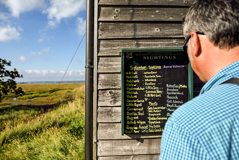 Birdwatching sightings board at Newtown Estuary Isle of Wight - National Trust