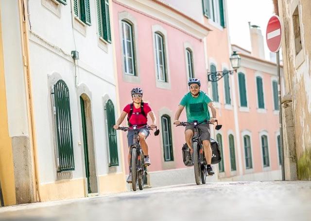 Pure Electric - Haibike Electric Hybrid Bikes