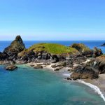 15 Best National Trust Walks in Cornwall to Experience Nature and Wildlife