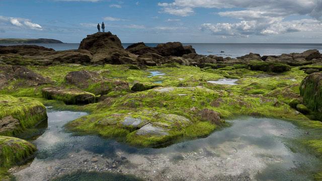 Rock pools in Cornwall