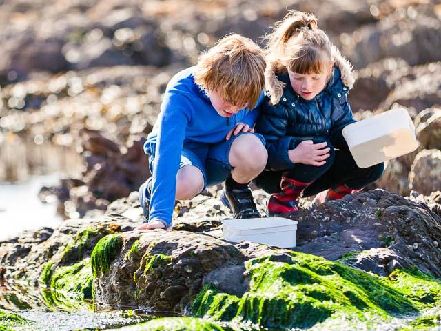 Children rockpooling at Wembury Beach, South Devon